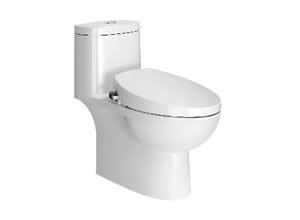 Bệt toilet American Standard VF 2024S
