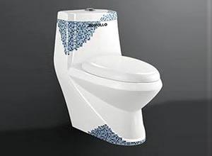 Bệt toilet Appollo AC 014