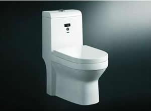 Bệt toilet Appollo AC 051