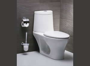 Bệt toilet Caesar CD1337