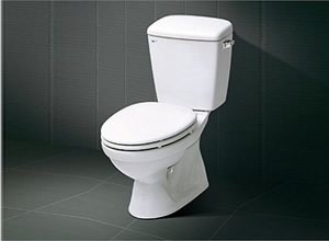 Bệt toilet Inax C 117VR