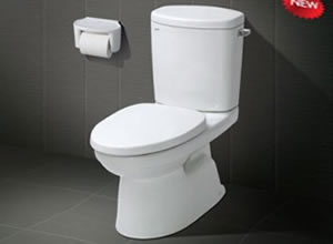Bệt toilet Inax C 711VRN