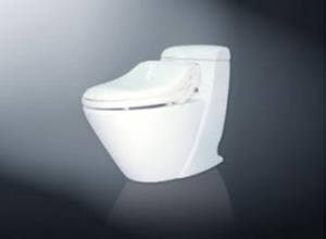 Bệt toilet Inax C 909 CW RS3VN