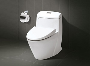 Bệt toilet Inax C 909VN