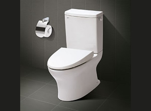 Bệt toilet Inax C 927VN