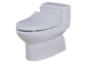 Bệt toilet Toto MS 884