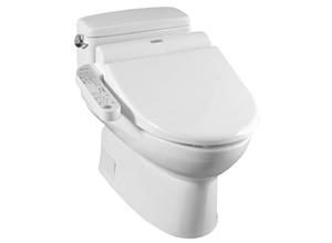 Bệt toilet Toto MS 884W3