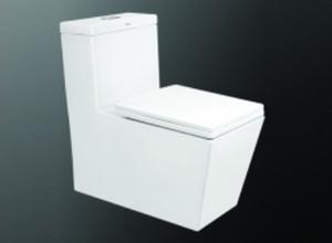 Bệt toilet Viglacera V47