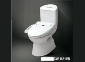 Bệt toilet Inax C 504R CW S11VN
